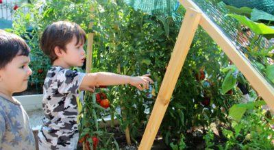 Kent Tarım Eğitim ve Uygulama Merkezi çocukların da ilgisini çekiyor.